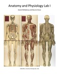 UGA Anatomy and Physiology 1 Lab Manual, 3rd Edition by DeLoris Hesse, Deanna Cozart, Brett Szymik, and Rob Nichols