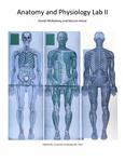UGA Anatomy and Physiology 2 Lab Manual